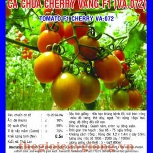 ca chua cherry vang f1 va071