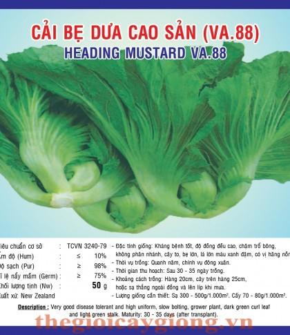 cai be dua cao san va88