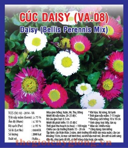 cuc daisy va08