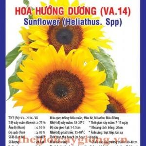 hoa huong duong va14