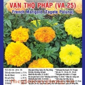 van tho phap va25