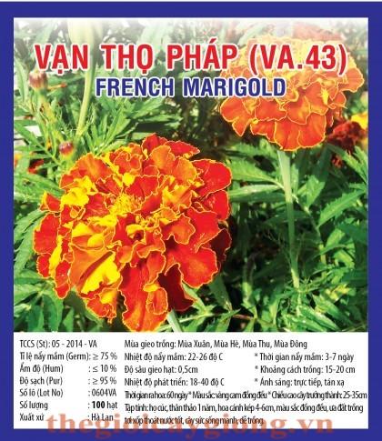 van tho phap va43